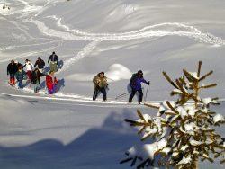 Snowshoeing - Vaujany, Alpe d'huez