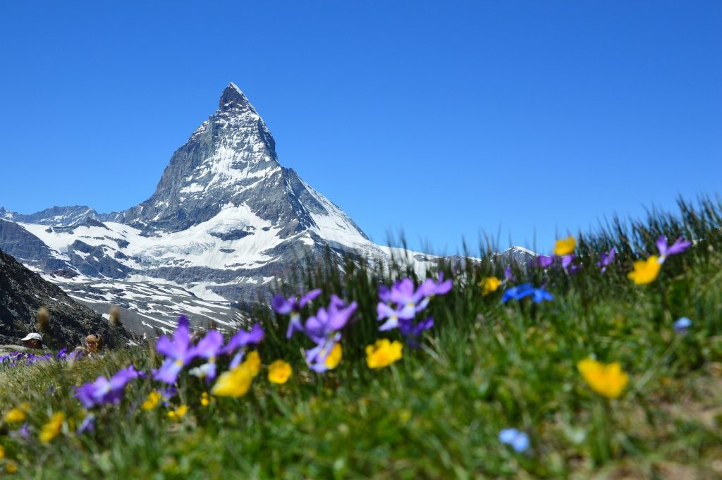Zermatt summer in the Alps