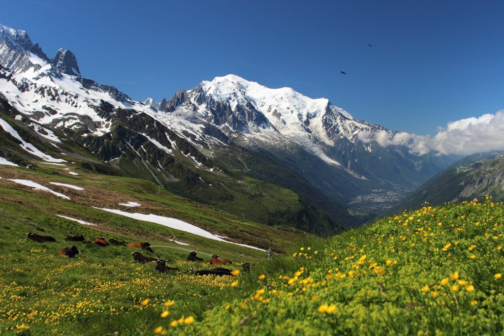 Mont Blanc - summer in the alps